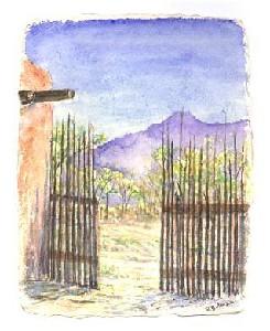 Morning Light New Mexico