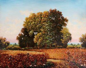 vukovic,dusan-Field of ripe wheat
