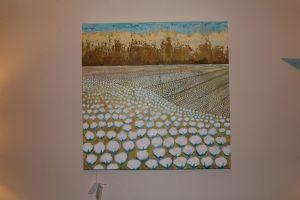 hampton,raina-cotton field