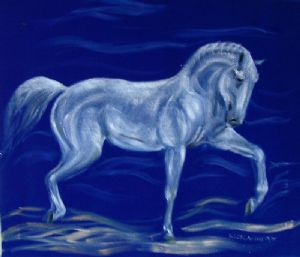 Luethi (alias Abdelghafar),Claudia-Horse on blue velvet