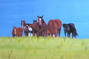 Luethi (alias Abdelghafar),Claudia-Herd of horses relaxing