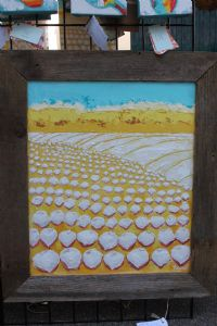 delta cottonfield in cypress frame