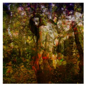 woman in the wood I