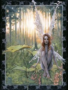 Orwick,Michael-Foxglove Fairy