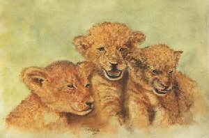 Three Lion Cubs