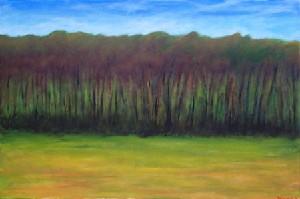 Long Field