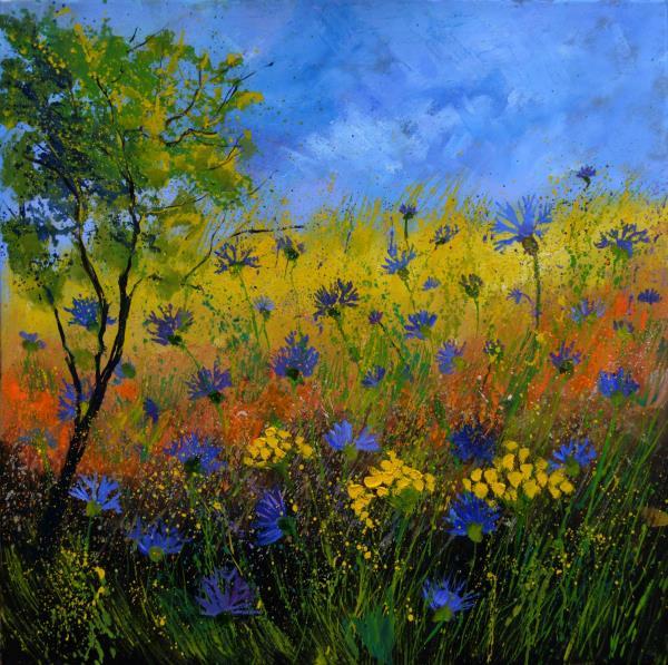 Blue cornflowers 7761