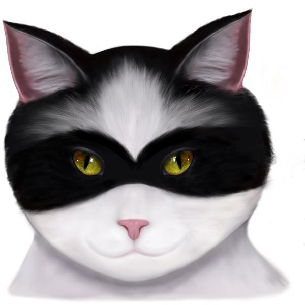 I am called the masked Cat