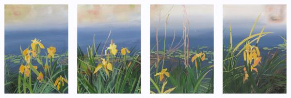 Irises over the water. Screen in 4 parts.