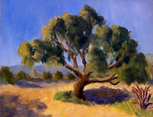 Powell,Fred-Arroyo Burro Tree