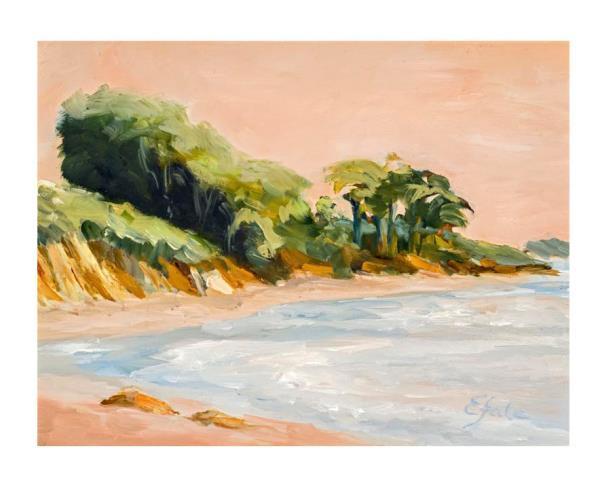 GOLETA BEACH CLIFF