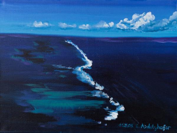 Luethi Abdelghafar,Claudia-Coral reef
