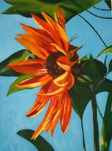 Sakjo,Renata-Sunflower