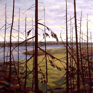 Spruce Twilight