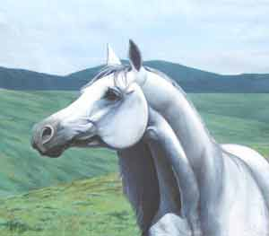 White Arabian