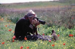 Shiela in the Fields