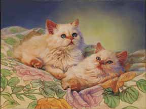 McMenamin,Mary-Cozy Kittens