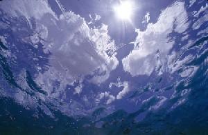 OCEAN SUNBURST c WHITNEY LANE