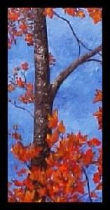 <b>Autumn Maples