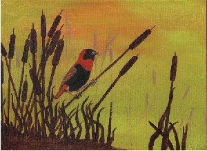 bird in bulrushes